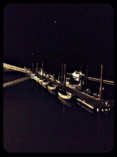 Nightphotography Streamzoofamily StreamzooBeach StreamzooPics