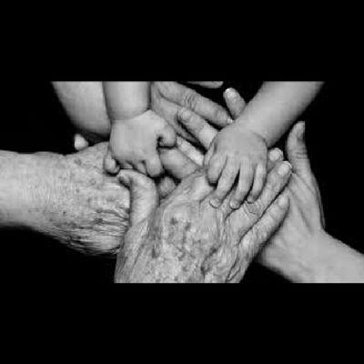 """""""Pero parece haber además otra razón oscura por la cual nosotros repetimos las enfermedades y los accidentes de nuestros ancestros. Tome cualquier árbol genealógico y verá que está lleno de muertes violentas, adulterios, anécdotas secretas, hijos naturales y alcohólicos. Son cosas que se esconden, heridas secretas que no se quieren mostrar. Entonces ¿qué es lo que pasa cuando, por vergüenza, por conveniencia o para """"proteger"""" a nuestros hijos o la integridad de la familia, no hablamos del incesto, de la muerte sospechosa, de la ruina del abuelo? El silencio crea una zona de sombra en la memoria de un hijo de la familia, quien, para llenar este vacío y eliminar las lagunas de sentido repetirá en su cuerpo o en su existencia el drama que intentan esconderle. Freud ya decía (y lo cito de memoria) que """"lo que no se expresa con palabras se expresa con los dedos"""". Yo pienso, como lo escribí en mi libro, que: """"Lo que se calla en las palabras se imprime, se repite y se expresa por los males."""""""" Anne Ancelin Schützenberger (Psicoterapeuta francesa especialista en psicogenealogía) ConstelacionesFamiliares"""