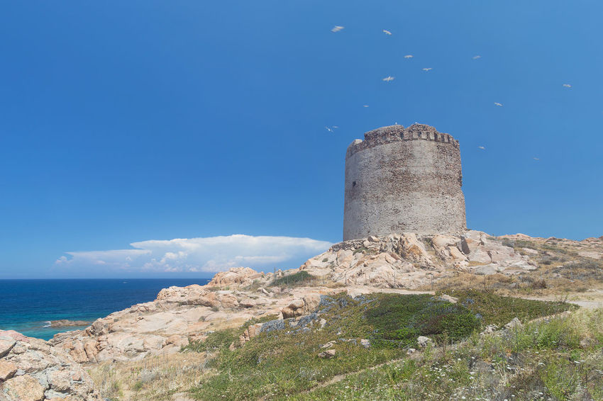 Aragonese tower 16th Century of Red Island (Isola Rossa) with a lot of seagulls Flying over Architecture Beauty In Nature Blue Day Isola Rossa Italia Italy Italy❤️ Nature No People Outdoors Red Island Sardegna Sardinia Sardinia Sardegna Italy  Scenics Sea Seagull Seagulls Seascape Seascape Photography Sky Water