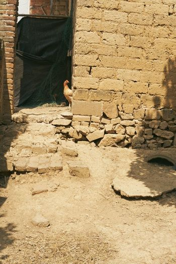 Low section of man working on wall