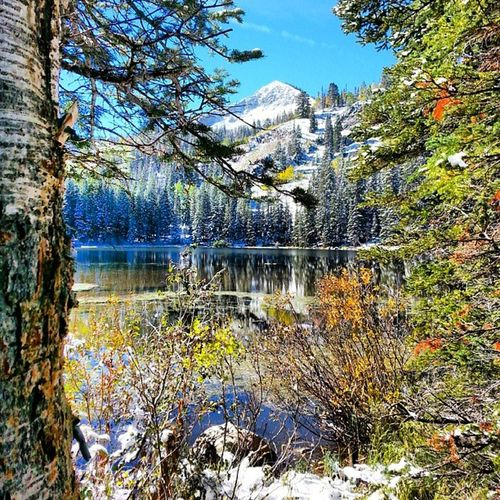 Hiking Nature Bluesky Lake Forest Utah LittleCottonWood Silverlake Snow Luvhike Goodlife Cold