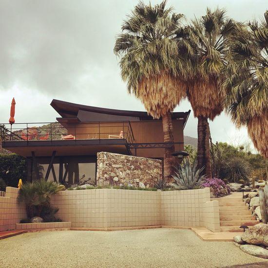 Midcentury Modern // Architecture
