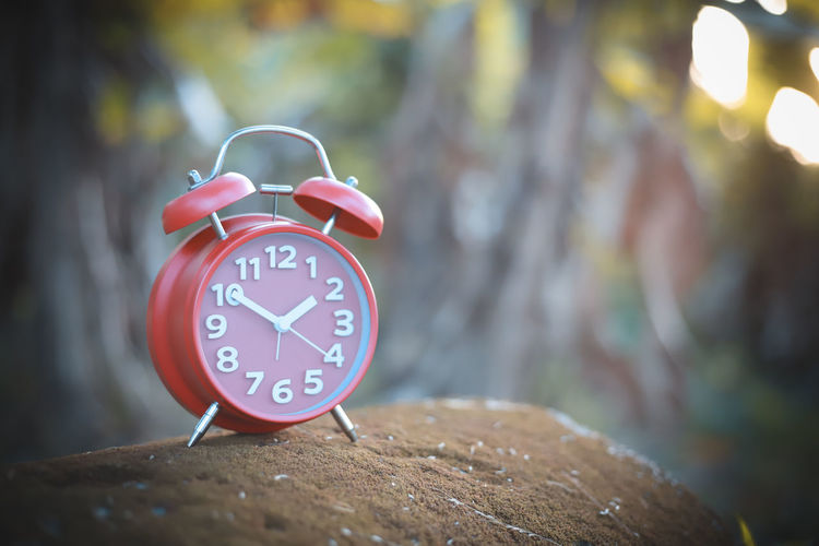 Alarm Clock Alarm Clock Focus On Foreground Clock Time Number Close-up No People Clock Face Day Accuracy Communication Outdoors Tree Red Minute Hand Shape Wood - Material Selective Focus Circle Hour Hand