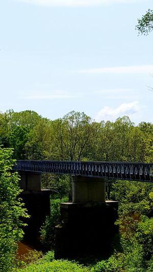 WPT Q span bridge WPT Bridge Biking Spring Rail Trail Trail Pennsylvania Different Perspective View
