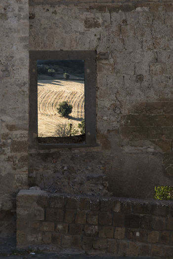 Grass Field Nature No People Picture In Picture Ruins Solitary Tree Stone Wall Stone Wall Background Window View