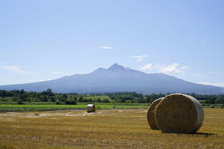 斜里岳と麦ロール Japan