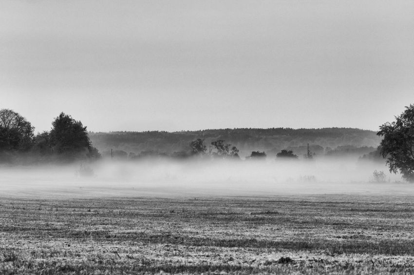 The fog is spreading out over the fields (edited version) - Agriculture Beauty In Nature Black & White Black And White Blackandwhite Cultivated Land Exceptional Photographs Field Fieldscape First Eyeem Photo Fog Foggy Idyllic Landscape Majestic Mist Misty Morning Monochrome Monochrome Photography Non-urban Scene Remote Rural Scene Scenics Tranquil Scene Tranquility