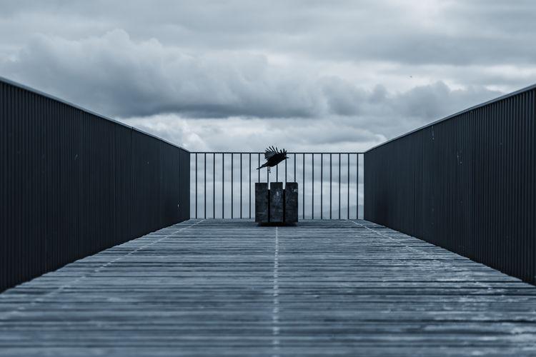 Bird on pier against sky