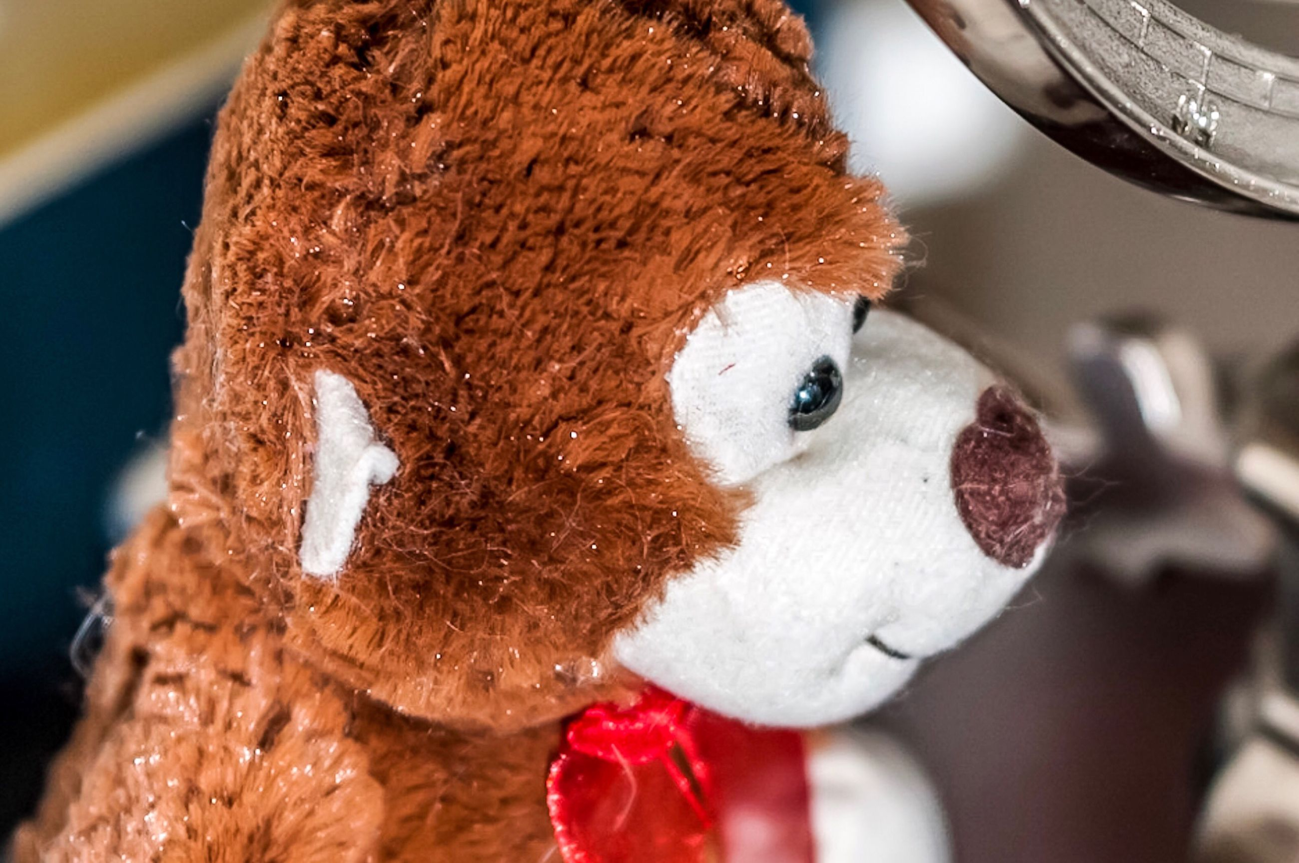indoors, stuffed toy, close-up, childhood, teddy bear, no people, day