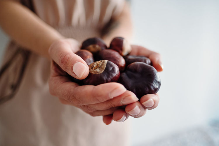 Midsection of woman holding chestnuts