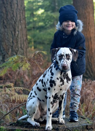 Portrait Of Girl Standing By Dalmatian