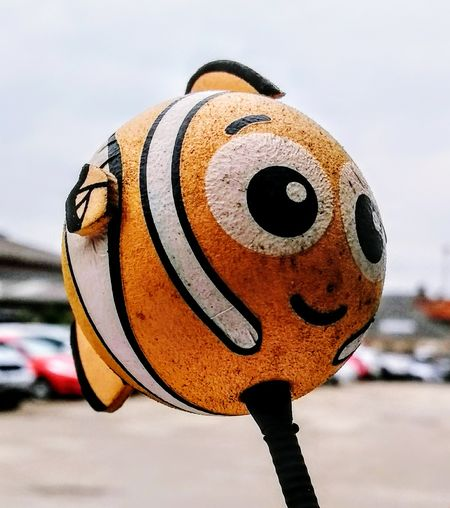 EyeEm Selects Clown Fish Fish Nemo Nemo Fish Aerial Car Car Aerial No People Outdoors Day Disguise Close-up Sky