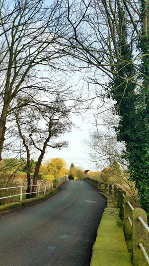 Tree Road Sky Tranquility Outdoors Scenics Kirbywiske Walking Around Taking Pictures Countryside Walking Around Yorkshire