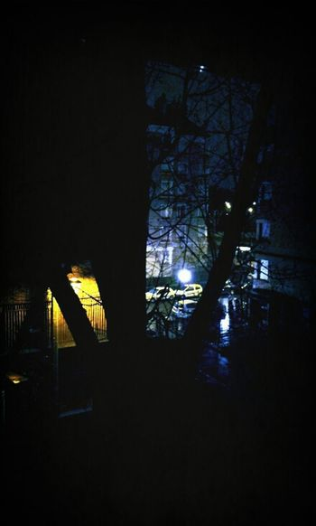 lumiere chaude VS lumiere froide ... Light Lamp Trees Night Lights From My Window Cold Tone Warm Tone Streetphotography