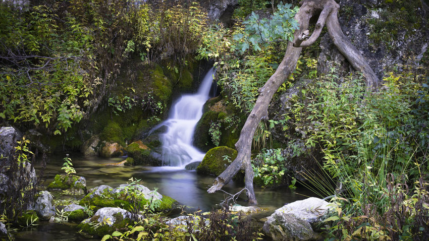 Beauty In Nature Environment Environmental Conservation Freshness Idyllic Long Exposure Lush - Description Lush Foliage Motion Napatu Nature No People Outdoors Refraction Rio Mundo River Scenics Social Issues Stream - Flowing Water Tree Vacations Water Waterfall