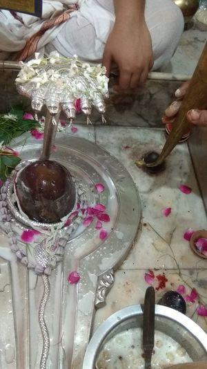 #mahadev Mahadev Mahadev Temple Mahadev Mahandev Devokedev Worshiping God Worship Worship Places Worshipper Worshipping Worship Time Worshipmusic Worship Worshiping Sprituality Spritualism Spritual Journey Haven Rudraksha Rudra Rudrabhishek