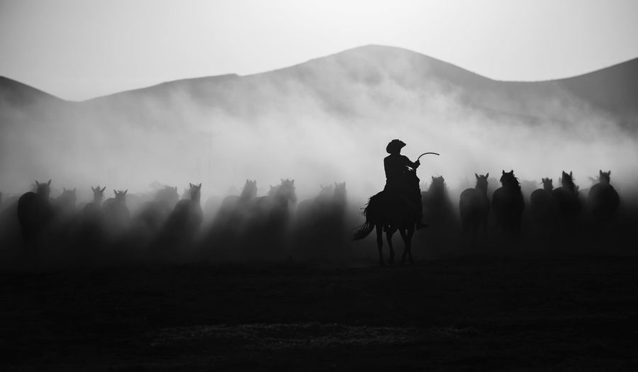 Silhouette man horseback riding on field against sky