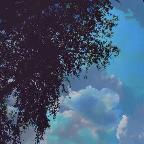 Happy Weekend 🙋🏼 Playing With Effects Tree Sky Nature Low Angle View Cloud - Sky Blue Tranquility Beauty In Nature