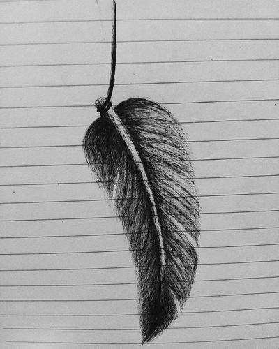 softly feather Art Artoftheday Arts Art_help Pen Pendrawing Pens Feathers Feather  Artist Artistic Inprogress Artgallery Seni Sketch Sketchbook Menggambar Hobby Vscocam Vscogood VSCO Instaart Instagood Vscogood Vscoart instapic