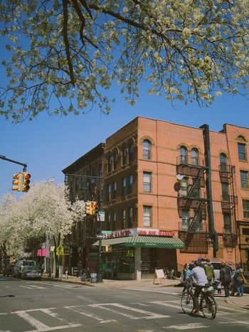 New York Brooklyn Streetphotography Park Slope Urban Cherry Blossoms Colors