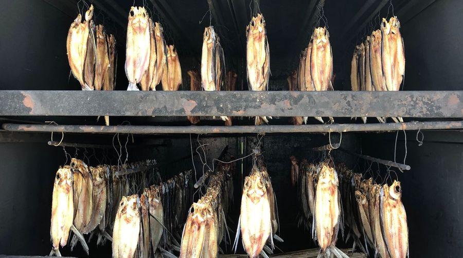 Fish food drying