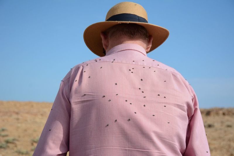 Rear view of insects on man back against clear sky