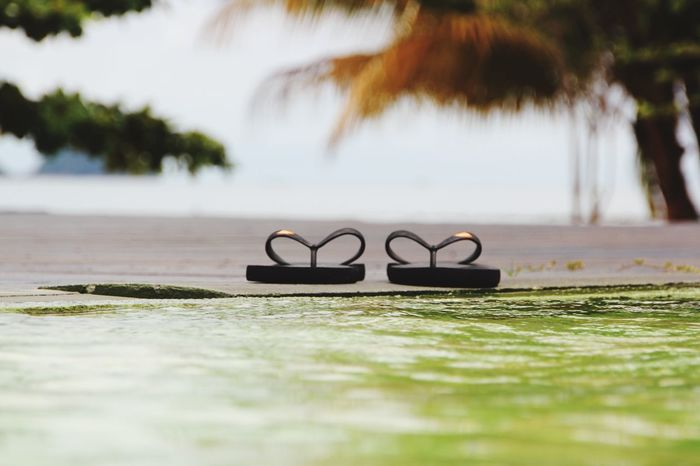Slippers Green Water Thai Thailand Koh Chang Travel Selective Focus Day Close-up Plant Nature Water No People Green Color Sandal Flip-flop Beach Outdoors