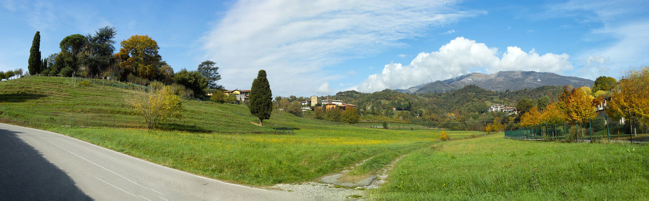 Panoramic shot of road amidst trees on field against sky