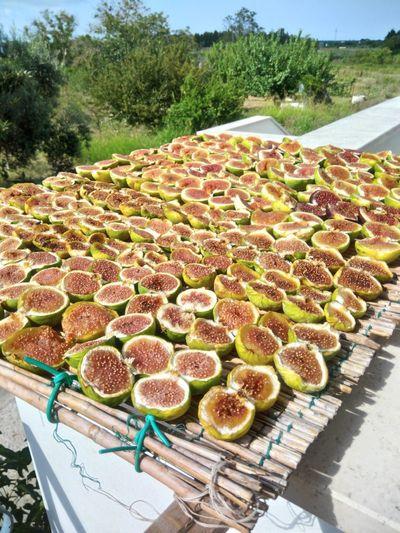 Tree Fruit High