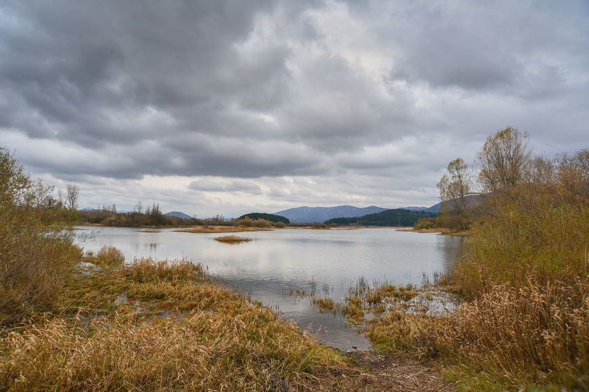 Cerknica Lake Cerkniško Jezero Beauty In Nature Cerknica Cloud - Sky Day Grass Lake Lake View Landscape Mountain Nature No People Outdoors Scenics Sky Tranquil Scene Tranquility Tree Water