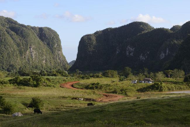 Country Road Countryside Cuba Landscape Mountain Non-urban Scene Rural Scene Solitude Tranquil Scene