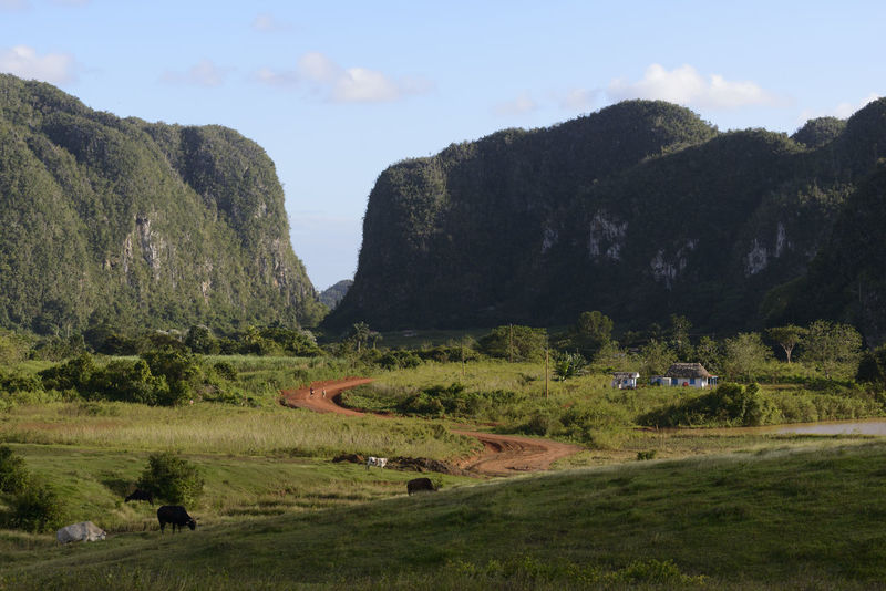 Country Road Countryside Cuba Landscape Mountain Non-urban Scene Rural Scene Solitude Tranquil Scene