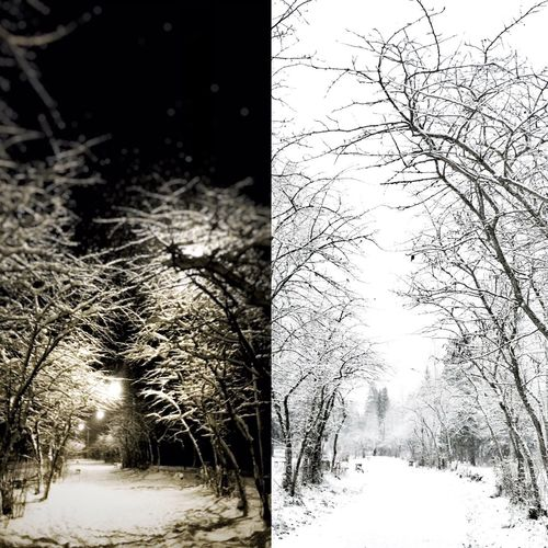 Dayandnight Night Day Russia Winter Snow First Eyeem Photo Morning Evening