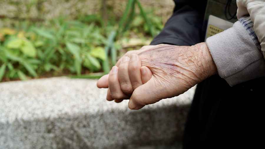 Close-up of man hand on plant
