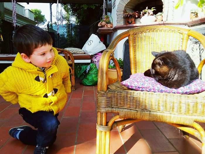 One Animal Pets Domestic Animals Sitting Childhood One Person People Child Boy Little Boy Boy With Cat Boy Playing With Cat Black Cat Fun Garden Child In The Garden