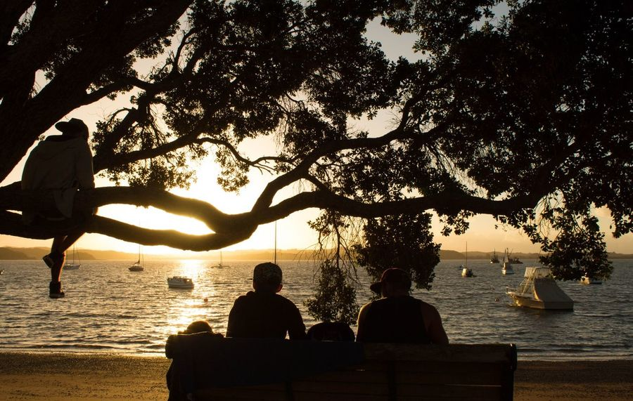 Sunset lovers Chilling Boat Travel Traveller New Zealand Tree Water Sitting Silhouette Sunset Men Togetherness Outdoors Nature Tree Trunk Sea Relaxation Tranquility Scenics Beauty In Nature Beach Branch The Great Outdoors - 2018 EyeEm Awards