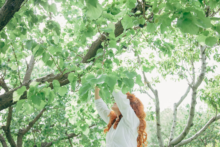 Low Angle View Of Woman By Tree