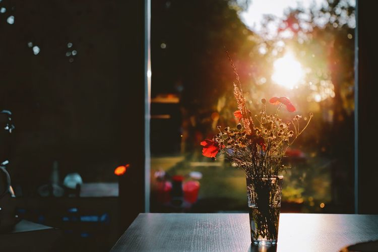 Close-up of illuminated flower vase on table