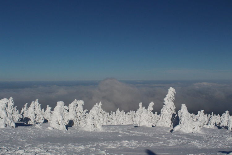 winter impressions of Nationalpark Harz Cold Temperature Snow Winter Nature Harz Brocken Trees Barks Of A Tree Sky Tranquil Scene Scenics - Nature Beauty In Nature Tranquility Water Day Blue Clear Sky Copy Space Sea No People Non-urban Scene Land Environment Ice Outdoors