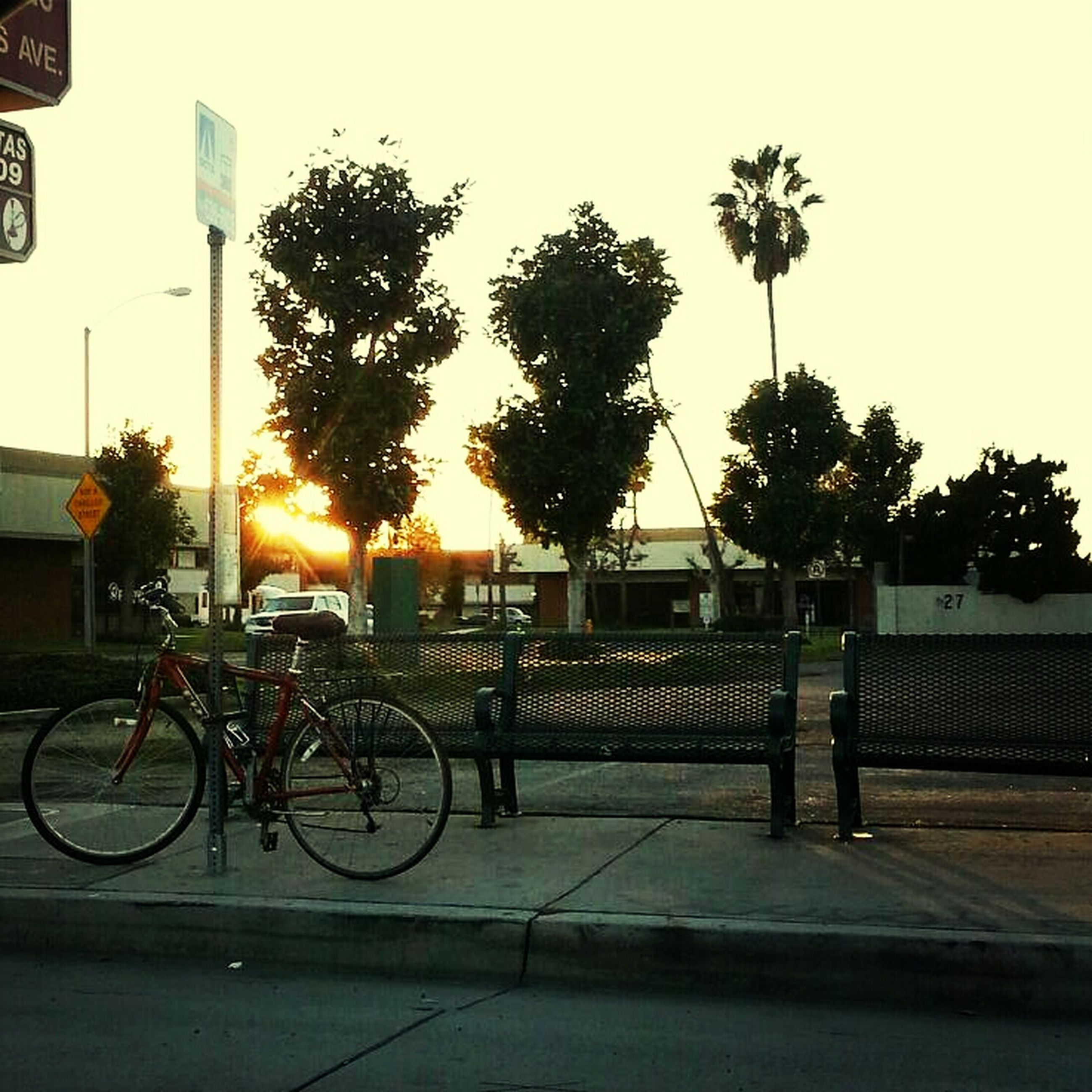 bicycle, transportation, land vehicle, mode of transport, parked, stationary, parking, tree, sunset, street, railing, road, car, sunlight, sidewalk, built structure, building exterior, parking lot, clear sky, silhouette