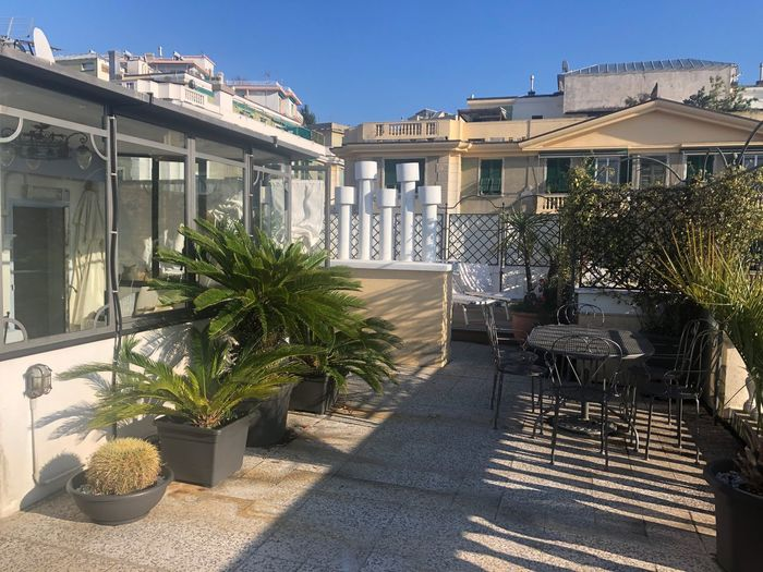 Roof top terrace Terrace Built Structure Architecture Building Exterior Sunlight Plant Nature Shadow No People Building Day Tree Potted Plant City Residential District Sky Growth Sunny Outdoors House Clear Sky