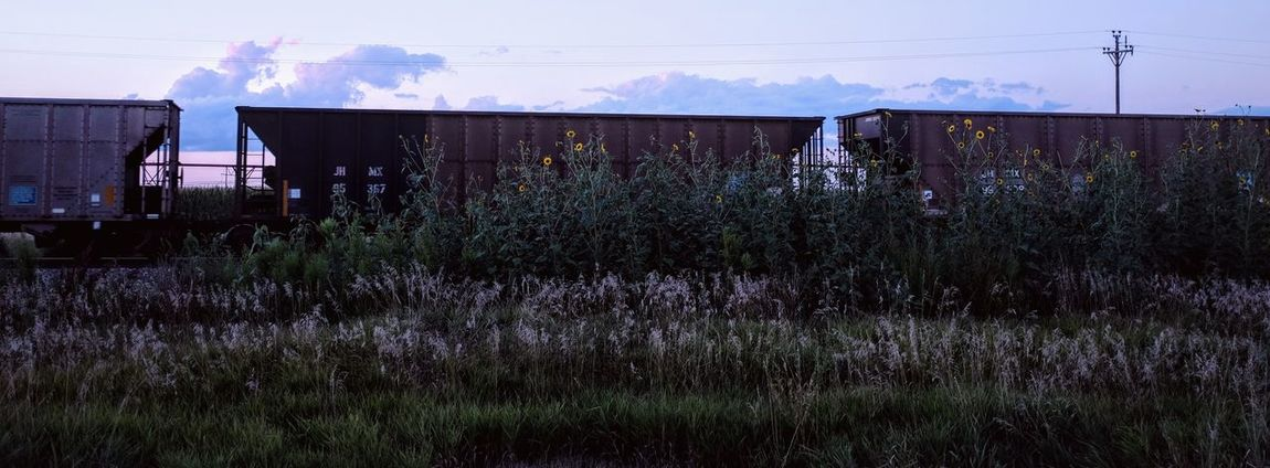 A day in the Life. August 12, 2016 Friend, Nebraska 35mm Camera Americans Blue Hour Camera Work Color Photography EyeEm Best Shots Eyeemphoto Fast Shutter Speed Freight Train FUJIFILM X100S Hobo Nebraska Off Camera Flash Passing Train Photo Essay Remote Location Rural America Selects Shoot Your Life Small Town Stories Storytelling Summertime The United States Train Transport
