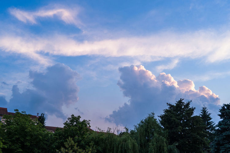 Autun Beauty In Nature Blue Cloud Cloud - Sky Cloudy Day Green Color Growth High Section Idyllic Landscape Low Angle View Lush Foliage Nature No People Non Urban Scene Non-urban Scene Outdoors Promenade Scenics Sky Tranquil Scene Tranquility Tree