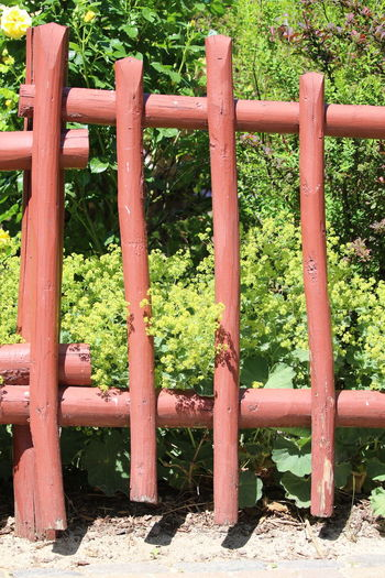 Day Fence Freshness Garden Green Color Neigbour Outdoors Summer Wood - Material Wooden Fence