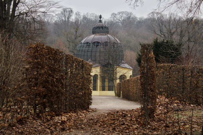 Outdoor Photography Built Structure Architecture Tranquility Nature Historical Building Cold SeasonOld Architecture Walking In The Park Vienna