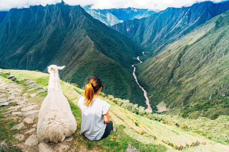 Rear view of young woman by llama sitting on mountain