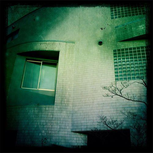フラッシなし Blanko Noir フィルム