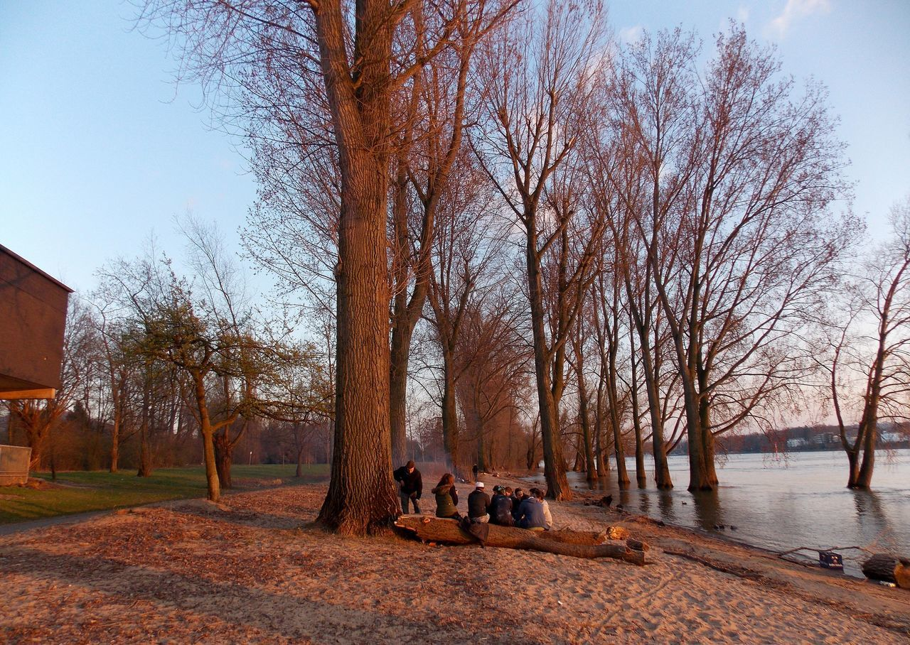 bare tree, tree, sitting, togetherness, outdoors, sky, day, leisure activity, nature, branch, real people, vacations, friendship, people, adult