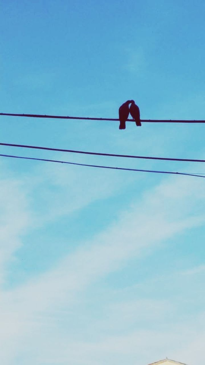 low angle view, cable, electricity, power line, blue, connection, power supply, no people, day, sky, outdoors, technology, nature