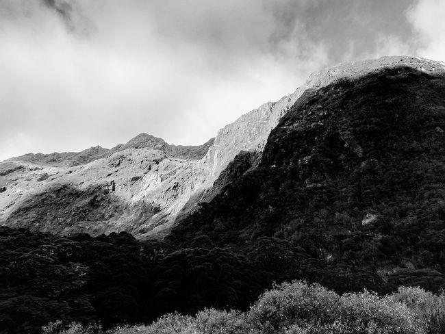 Monkey Creek. Monochrome Blackandwhite B&w Nature Travel Landscape Light And Shadow Mountain Tree Sky Mountain Range Cloud - Sky Physical Geography Geology Rocky Mountains Rugged Natural Landmark